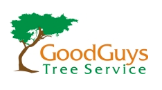 Good Guys Tree Service