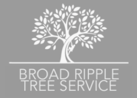 Broad Ripple Tree Service