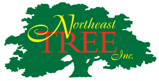 Northeast Tree, Inc.