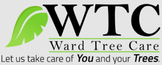 Tree Service Ward Tree Care in Kansas City MO