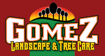 Tree Service Companies Gomez Landscape & Tree Care in Los Angeles CA