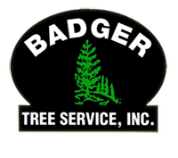 Tree Service Badger Tree Service in Hillsboro OR