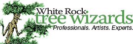 White Rock Tree Wizards
