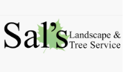 Tree Service Sal's Landcape & Tree Service in Irving TX