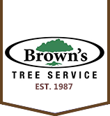 Tree Service Brown's Tree Service in Raleigh NC