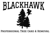 Blackhawk Tree Services