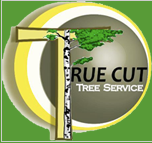 True Cut Tree Service