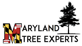 Maryland Tree Experts