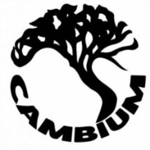 Cambium Tree Care Specialists
