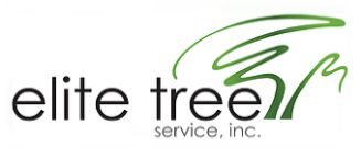 Tree Service Elite Tree Service in Walnut Creek CA