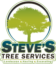 Tree Service Steve's Tree Services in Toledo OH