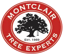 Montclair Tree Experts