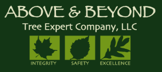 Above & Beyond Tree Expert Company