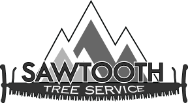 Sawtooth Tree Service