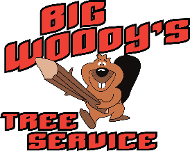 Tree Service Big Woody's Tree Service in Chattanooga TN