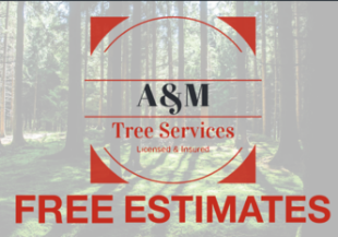 Tree Service A&M Tree Services, LLC in Fairfield OH