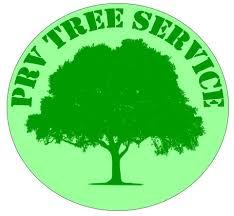 Tree Service PRV TREE SERVICE in Round Rock TX