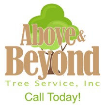 Above and Beyond Tree Service, Inc.