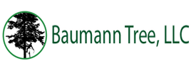 Baumann Tree, LLC
