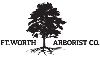Fort Worth Arborist