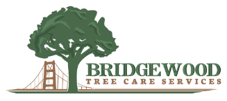BridgeWood Tree Care