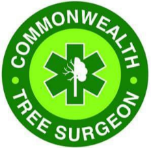Commonwealth Tree Surgeon