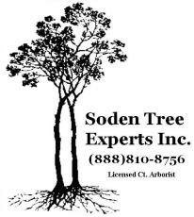 Soden Tree Experts