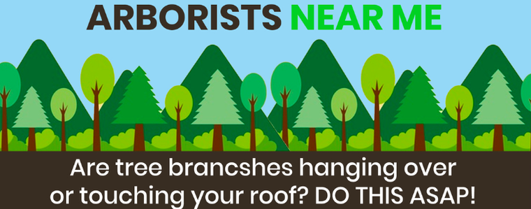 Are tree branches hanging over or touching your roof? DO THIS ASAP!