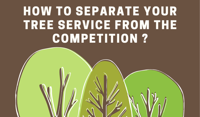 How to separate your tree service from the competition?