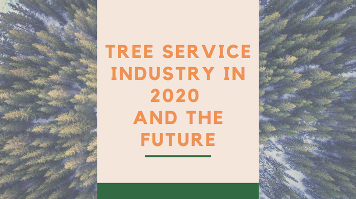 Tree Service Industry in 2020 and the Future
