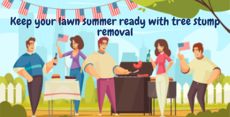 How to keep your lawn summer ready with tree stump  removal...